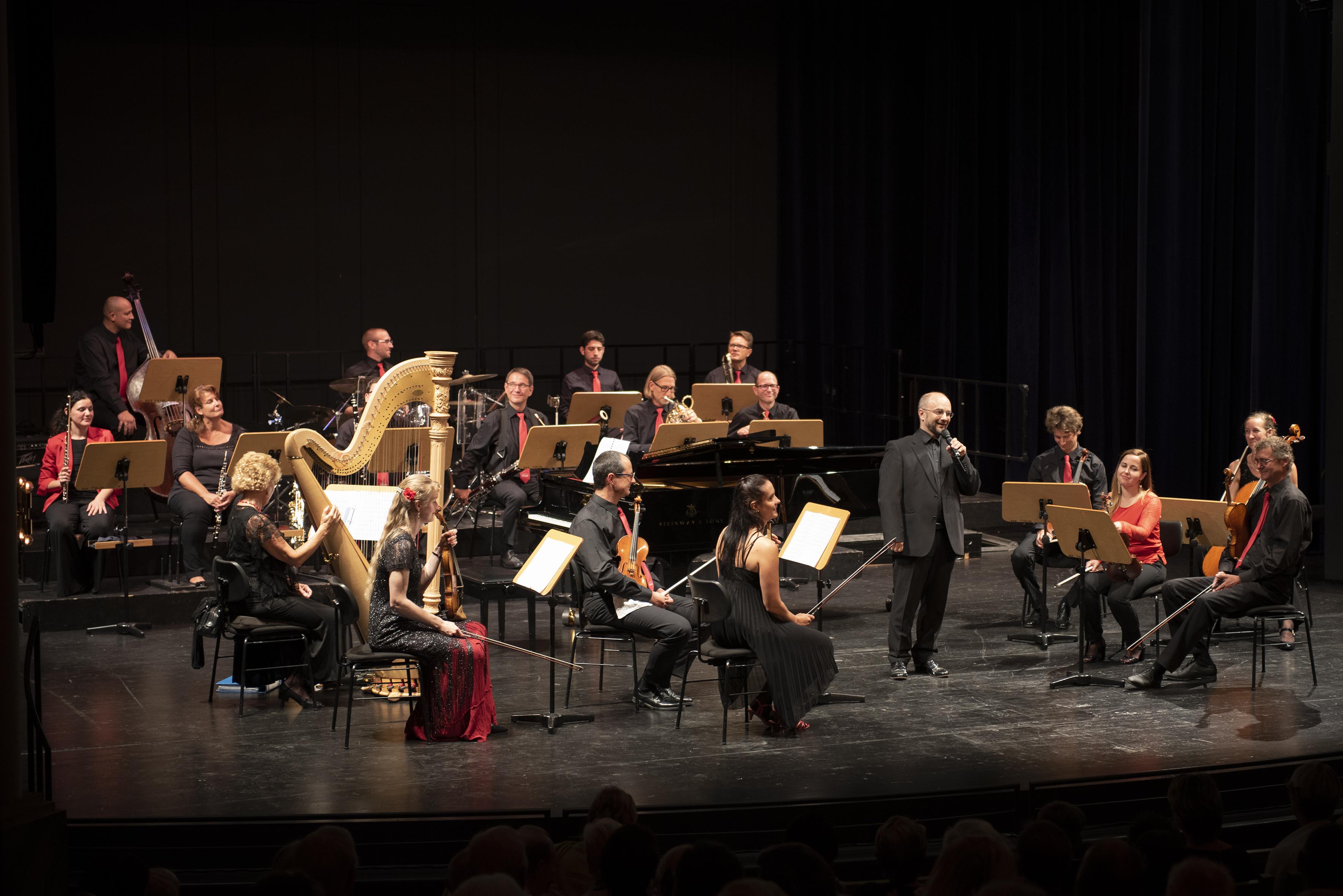 <strong>Salonorchester der Bad Reichenhaller Philharmonie</strong>