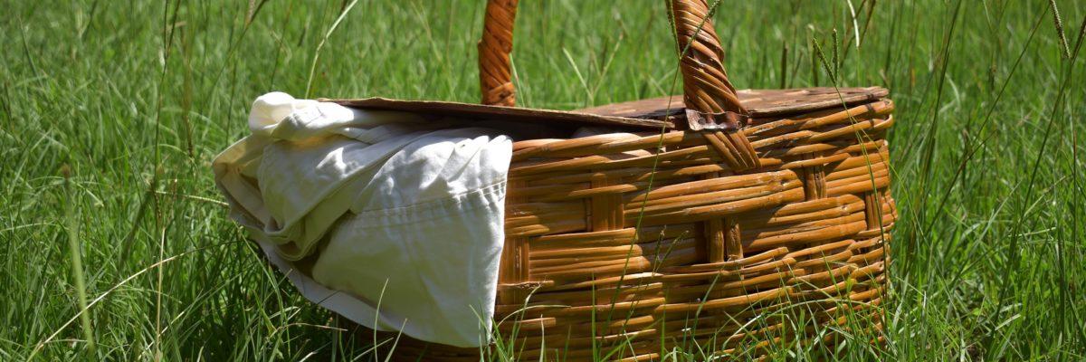 picnic-5421516_1920